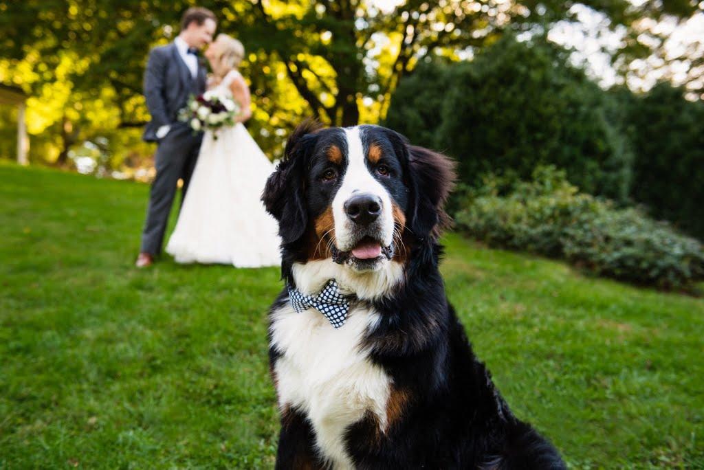 Fall Pa Wedding