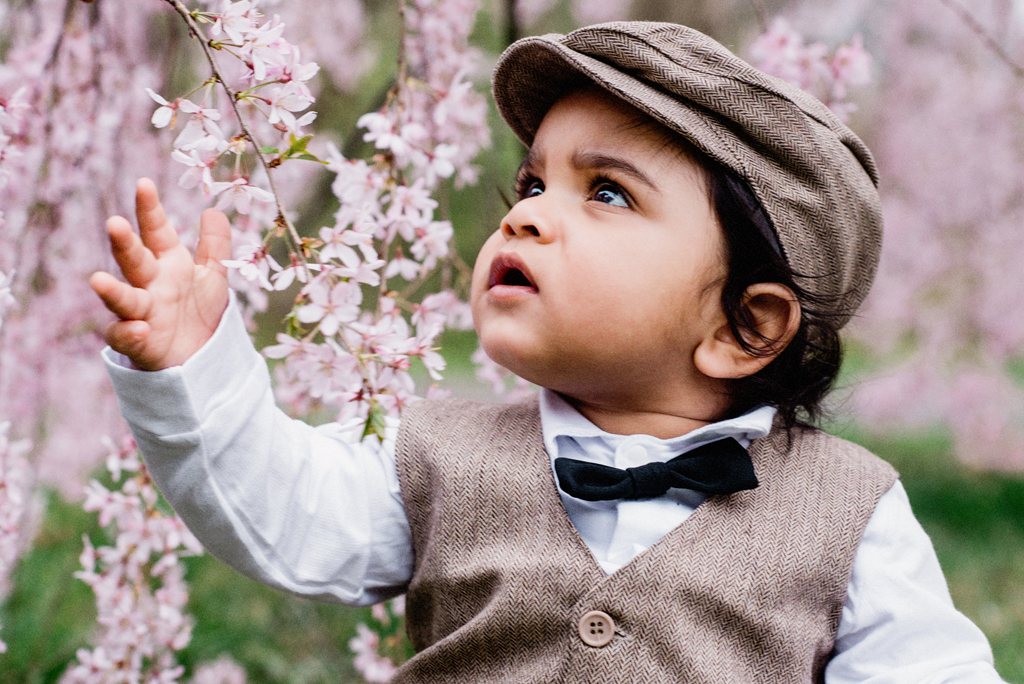 Cherry Blossom Family Shoot
