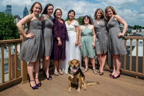 wedding dogs-3