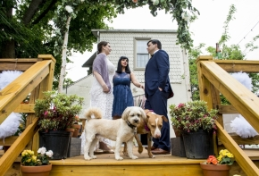 wedding dogs-9