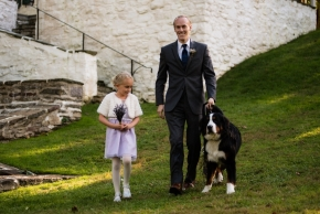wedding dogs-56