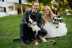 wedding dogs-58