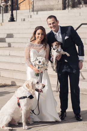 wedding dogs-48