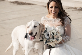 wedding dogs-49
