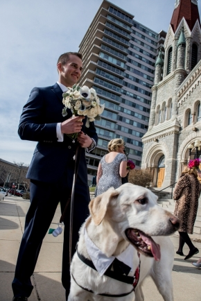 wedding dogs-52