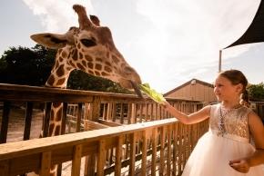 zoo_wedding0346