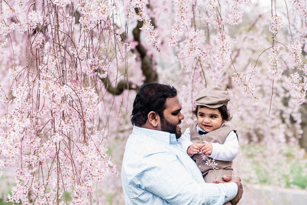 Cherry_Blossom_Family_36