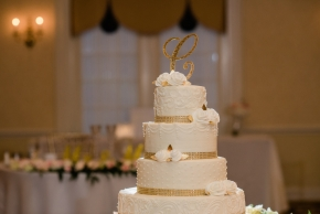 Spring Mill Manor Wedding0143